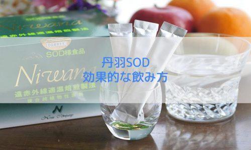 丹羽SODの効果的な飲み方を解説